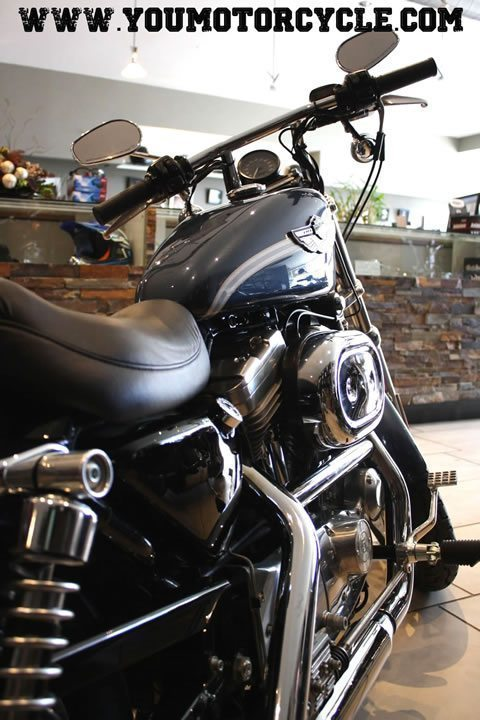 2003 HD sportster 100th Anniversary Edition